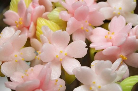 nhung mon an noi tieng nhat lam tu hoa anh dao 3