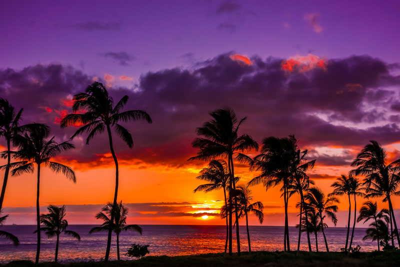 du lich hawaii thien duong giua long thai binh duong 5